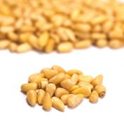 Pine Nuts Chinese